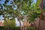 3300 Rufina - Photo 14