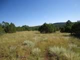 Tract 8 Ojitos Frios Ranches - Photo 3