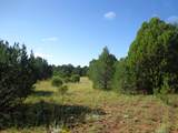Tract 8 Ojitos Frios Ranches - Photo 5