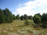 Tract 8 Ojitos Frios Ranches - Photo 6