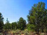 TBD Forest Service Rd. 556 - Photo 2