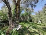 151 Camino De Los Ranchos - Photo 25