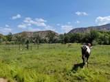 151 Camino De Los Ranchos - Photo 60