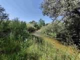 151 Camino De Los Ranchos - Photo 63