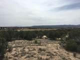5 Via Palomita (Black Mesa, Lot 8) - Photo 2