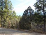 TBD Shroyer Drive, Laguna Vista - Photo 1