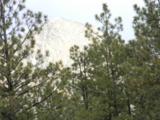 Saddle Ridge #5 Ticonderoga Sd - Photo 6