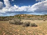 County Rd. 0211 Wilderness Gate Ranch - Photo 25