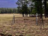 0 Mineral Hill Ranch - Mineral Hills - Photo 1