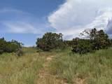 12 Camino Valle - Photo 4