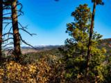 3 Ponderosa Pines, Buckman - Photo 2