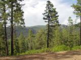3 Ponderosa Pines, Buckman - Photo 22