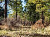3 Ponderosa Pines, Buckman - Photo 24