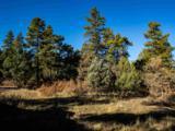 3 Ponderosa Pines, Buckman - Photo 4