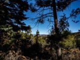 3 Ponderosa Pines, Buckman - Photo 6