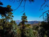 3 Ponderosa Pines, Buckman - Photo 7