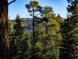 3 Ponderosa Pines, Buckman - Photo 8