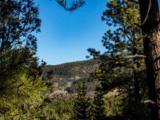 3 Ponderosa Pines, Buckman - Photo 9