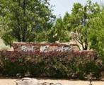 6-A Calle Arbusto (Lot 22) - Photo 2