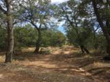 Tract D Soaring Hawk Trail - Photo 2