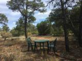 Tract D Soaring Hawk Trail - Photo 7