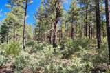 254 Highway 266, Sapello, New Mexico 87745 - Photo 38