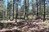 254 Highway 266, Sapello, New Mexico 87745 - Photo 40