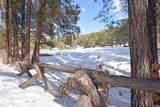0 Elk Trail - Photo 12