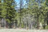 47 Silver Feather Trail Lot 6 - Photo 14