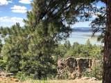 72A Canyon Dr Loop - Photo 3