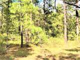 10 acres Trumbull Canyon - Photo 14