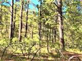 10 acres Trumbull Canyon - Photo 15
