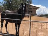 60 Ranchos Canoncito - Photo 21