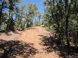 71 Apache Canyon Trail - Photo 35