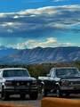 1209 Bear Mountain Rd. - Photo 53