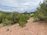 112 Camino San Jose - Photo 10