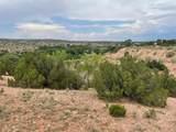 112 Camino San Jose - Photo 16