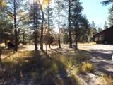 29 Pd 1751, Millstone Acres - Photo 27