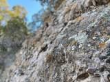 406 Camino Los Abuelos - Photo 14