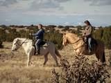 406 Camino Los Abuelos - Photo 15