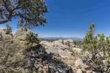 51 Coyote Mountain Road - Photo 42