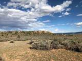 County Rd. 0211 Wilderness Gate Ranch - Photo 13