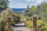 37 Camino Botanica - Photo 49