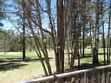 66 Forest Dr - Photo 38
