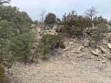 212 Ojo De La Vaca Trail - Photo 24