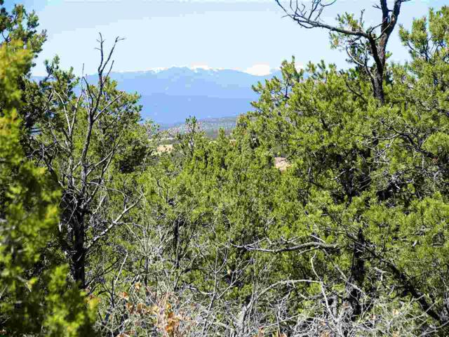 2B1 Cielo Azul Cielo Azul, Rowe, NM 87562 (MLS #201401360) :: The Very Best of Santa Fe