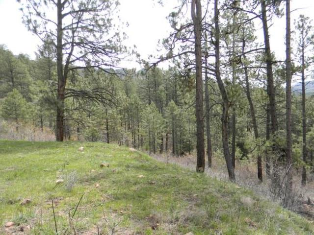 Hidden Canyon #1, Chama, NM 87520 (MLS #201502245) :: The Very Best of Santa Fe