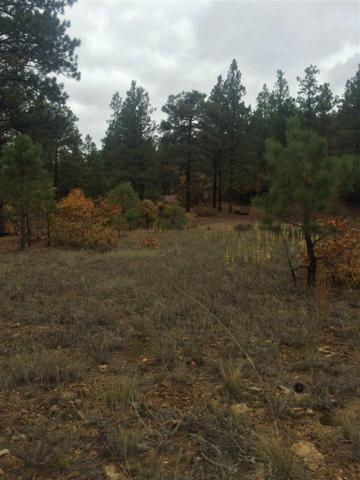 Lot 3B Diamante, Chama, NM 87520 (MLS #201600182) :: The Very Best of Santa Fe