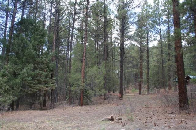 Lot 16 Pino Real, Brazos Meadows Brazos Meadows, Brazos, NM 87575 (MLS #201600693) :: The Desmond Hamilton Group