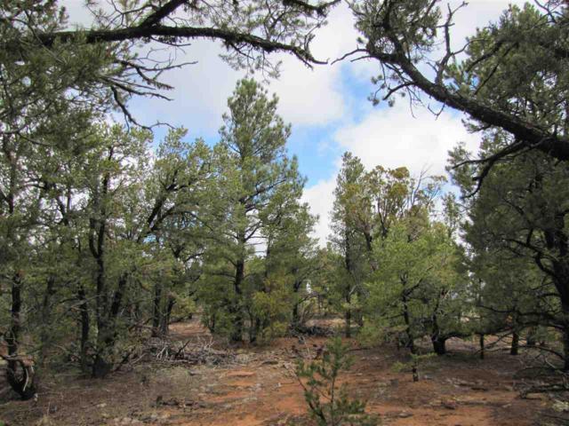 64 The Cliffs View, Glorieta, NM 87535 (MLS #201601505) :: The Very Best of Santa Fe